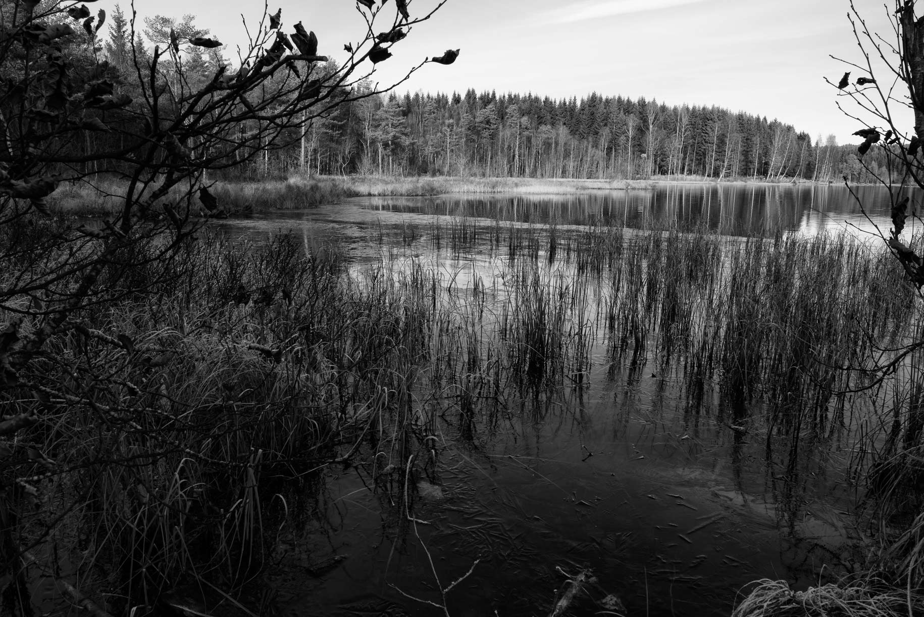 Fine Art Lake study black and white