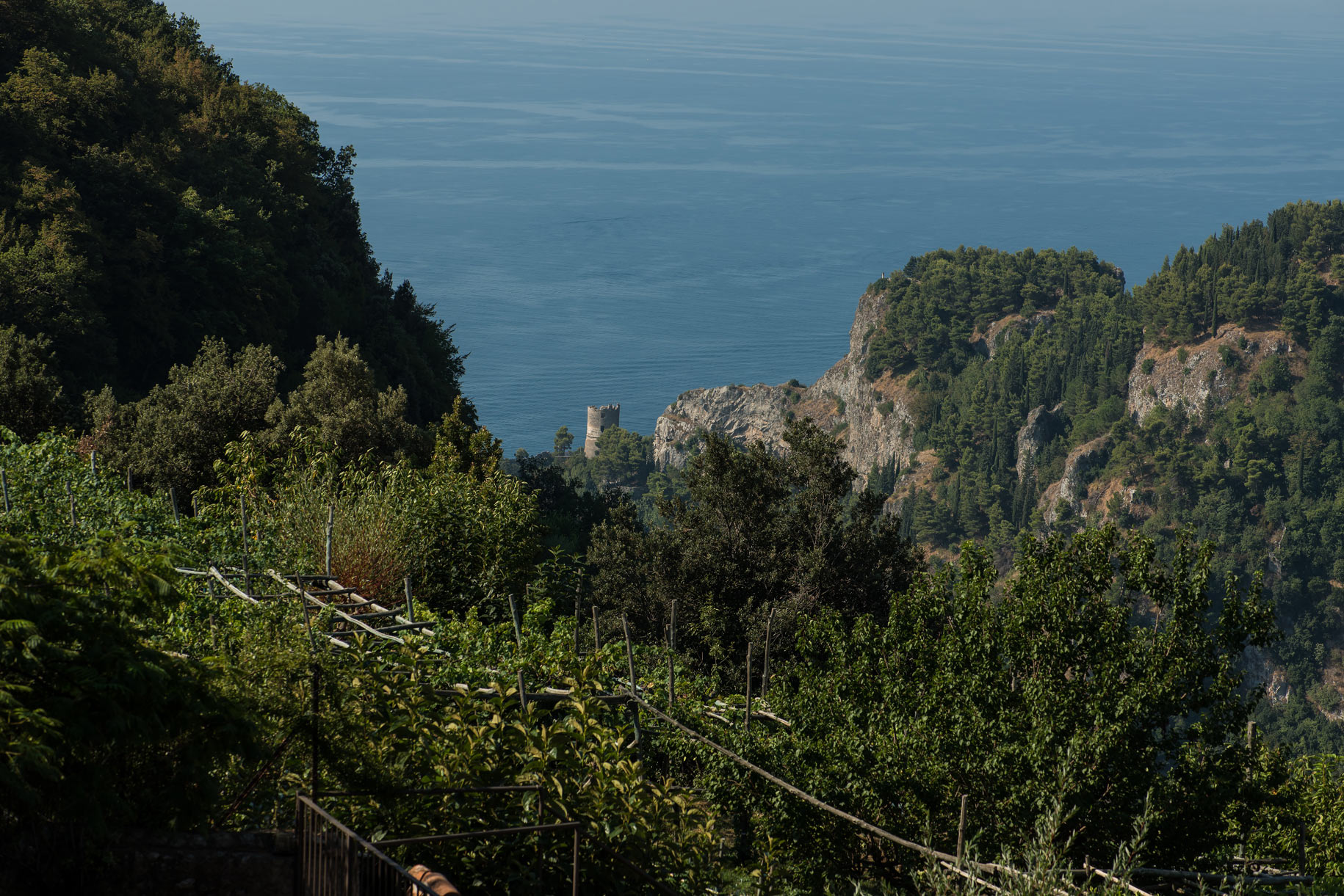 ravello coast over vines